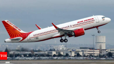 Challenges abound as Tata draws up flight plan for Air India