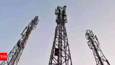 Govt asks telcos to convey about opting for dues moratorium by October 29